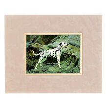 Dalmatian Dog 3D Lenticular Wall Decor Animal Vintage  8x10 #TP-211-RF-ROCCO#