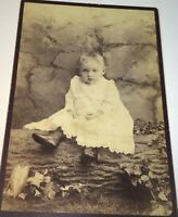 Antique Victorian American Fashion Adorable Child On Log! New York Cabinet Photo