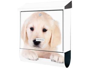 KlebeSpatz Motiv Bild Briefkasten XXL Premiumline Zeitungsrolle Hund Labrador