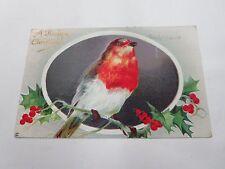 A HAPPY CHRISTMAS BIRD ANTIQUE POSTCARD