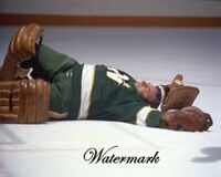 NHL 1970's Gump Lorne Worsley Game Action Down & Out Color 8 X 10 Photo Picture