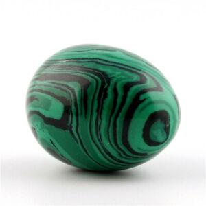 Natural Green Malachite Jade Egg Rock Crystal Fossil Original Stone Ornament US