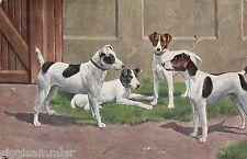 Vier Hunde AK 1913 Künstler Dogs Chiens Honden Tiere 1601008