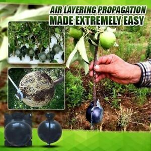 Plant Rooting Ball Plant Root Growing Box Grafting Breeding Case For Garden Set