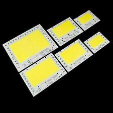 10W 20W 30W 50W 100W 200W SMD LED Chip COB light bulb spectrum lamp AC 110V 240V