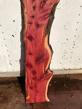 "#439 Slab 1 3/4"" Thick 47 1/2"" Long 13"" Wide Live Edge Red Cedar Slab"