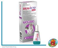 Bravecto Plus for Large Cats (>6.25 – 12.5kg) Purple x 1 pack (2 months protec
