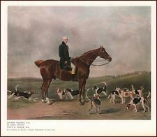 HUNTER HORSE with Hound Pack, Thomas Waring, vintage print authentic 1927