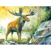 Marcia Baldwin 23505 MOOSE CREEK 12x16 Canvas Wall Art in Window Gift Box