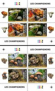 Central Africa. 2020 Mushrooms.  (504c)