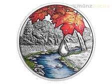 20 $ Dollaro Gioiello of the Rain Sugar Acero Leaves Canada 1 oncia d'argento PP
