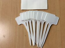 Plant Markers - T Shape - Pack of 10 - with Stickers - Pot - Labels - Plastic