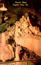 Postcard Prairie Dogs Crystal Cave Pennsylvania Chrome Unused