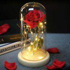 Rosa Eterna La Bella e la Bestia Incantata Lampada Stabilzzata LED Vetro Disney