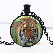 Tiger Wild Animal photo Glass Dome black Chain Pendant Necklace wholesale