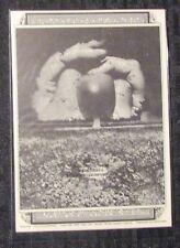 "BYRDS Taj Mahal 4.5x6.5"" Family Dog #144 Concert Post Card FVF 7.0"