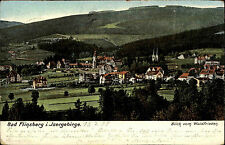 FLINSBERG Świeradów-Zdrój Schlesien 1905 Isergebirge Polen alte Postkarte