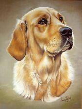 SALE- GOLDEN RETRIEVER BY BRIAN HUPFIELD DOG PRINT 12 X 16 INCH - REDUCED