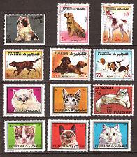 FAJARAH Animales animales de compañía: Perros y gatos E25