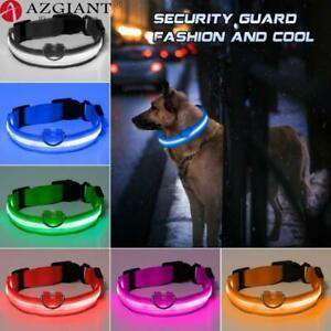 5 Sizes LED Dog Collar Anti-Lost/ Car Accident Avoid Collar Cats Collar Luminous