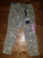 NWT Womens Creamstone Bloom LISBETH BANDOLINO Curvy Skinny Crop Pants Size 6
