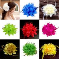 Haarblume Haarclip Haarspange Blume Blüte Ansteckblume Haarschmuck Haarklammer