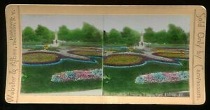 Lincoln Park Gardens Hand-colored Stereoview Chicago Webster & Albee #604 ~1890