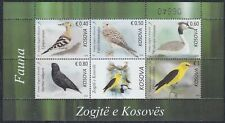 Kosovo 2018 Local birds, block, MNH