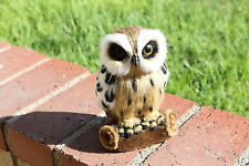 Furry Animal Brown OWL Bird Taxidermy Adorable Owls Figurine Decor Dabin