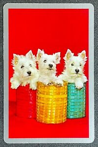 """Vintage Swap / Playing Card """" Adorable White Terrier Dogs """" in Baskets Excellent"""
