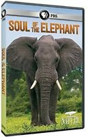 Nature: Soul of the Elephant [New DVD]