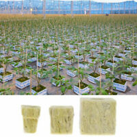 5Pcs Rockwool Cubes Hydroponic Grow Soilless Cultivation Planting Compress UK wr