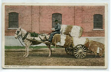 Cotton Horse Cart Farming Transport 1910c Phostint postcard
