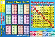 POSTER educativo chartmedia DUAL tempi di tabelle e moltiplicazione quadrato (0184)