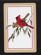 cardinal birds playing card single swap king of diamonds - 1 card