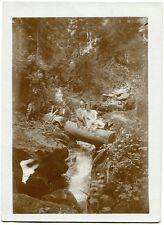 Waldspaziergang. Original-Photo um 1920