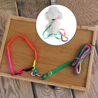 Colorful Rainbow Pet Dog Collar Harness Leash Soft Walking Durable Traction R Kn