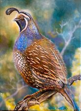 Beautiful Original Oil Painting Quail, animal, realism (listed Artist)