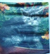 20 serviettes  en papier CHAT dans les fleurs   ref. 131