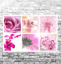 STUNNING PINK FLORAL CANVAS COLLAGE #9 QUALITY FLOWERS WALL ART BOX CANVAS 30X20