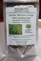 Jiaogulan Herb Capsules 500mg -100% Gynostemma pentaphyllum - Organic Bio