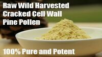 Cracked Cell Wall Pine Pollen 100g - Wild Harvested Raw & Organic - Free Express