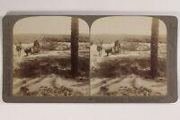 Egitto Travaux Fattoria Foto Stereo Vintage Citrato 1904
