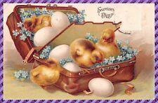 Carte Postale - Fantaisie - Gaufrée -  Poussin de Pâques