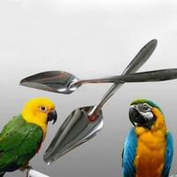 1pcs Stainless Steel Pet .Feeding Tool Water Milk Spoon For Bird Parrot Sup T8V2