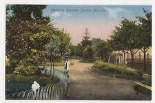 Madeira, Funchal, Jardim Municipal Postcard, B145