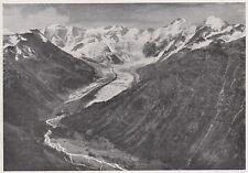 D8219 Gruppo Bernina e ghiacciaio di Morteratsch - Stampa d'epoca - 1931 print