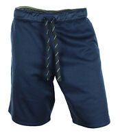 NEW THE NORTH FACE PERFORMANCE TRAINING AMPERE BLUE SHORTS L