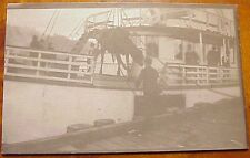 1910's Cow Hoisted Aboard Transport Boat Th Hawaii Azo Rppc