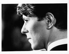 Photo originale David Bowie Gigolo David Hemmings